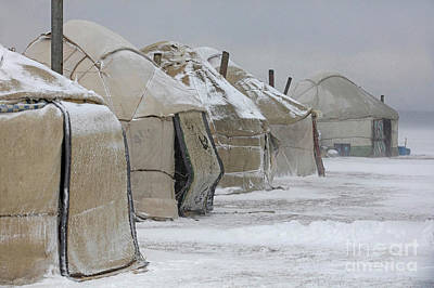 Photograph - Yurts In Snowstorm by Arterra Picture Library