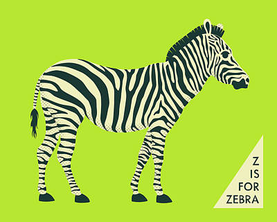 Z Is For Zebra - 2 Art Print