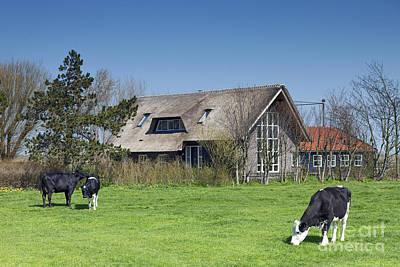 Zaandam Photograph - Zaanstad by Andre Goncalves