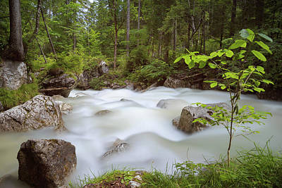Photograph - Zauberwald, Bavaria by Andreas Levi