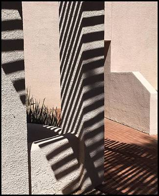 Photograph - Zebra Adobe by Marlene Burns