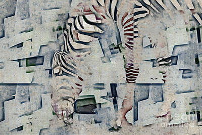Photograph - Zebra Art - 52spt by Variance Collections