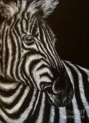 Drawing - Zebra by Art By Three Sarah Rebekah Rachel White
