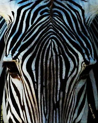 Photograph - Zebra by Bob Shimer