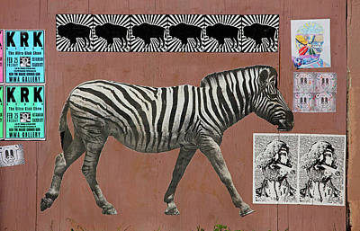 Photograph - Zebra Collage by Art Block Collections