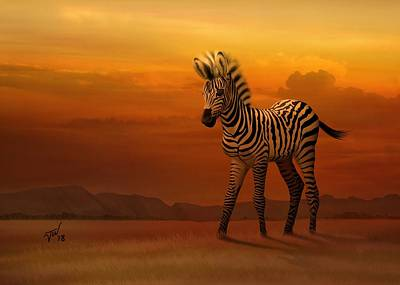 Digital Art - Zebra Fawn  by John Wills