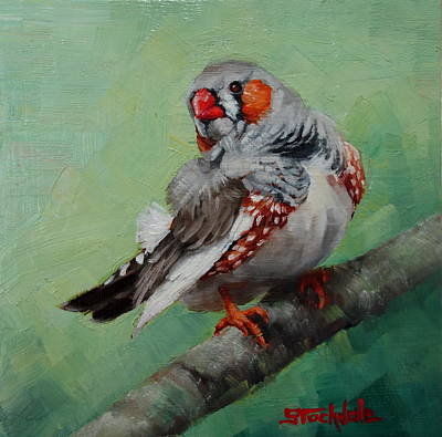 Painting - Zebra Finch Miniature by Margaret Stockdale