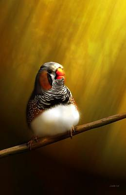 Digital Art - Zebrafinch Portrait by John Wills