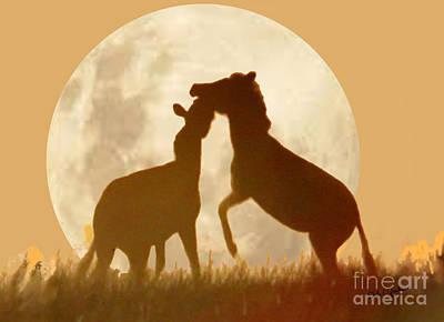 Zebra Full Moon Silhouettes  Art Print by Dale Jackson