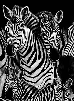 Zebra In Painting - Zebra Group  by Gull G
