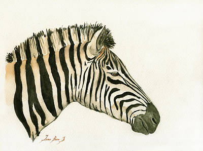 Zebra Head Study Painting Art Print by Juan  Bosco