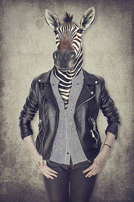 Zebra In Clothes. Concept Graphic In Vintage Style.  Art Print