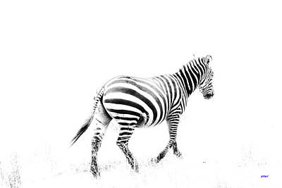 Zebra Digital Art - Zebra In Tanzania by KJ DePace