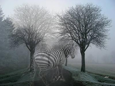 Zebra Digital Art - Zebra In The Woods by KJ DePace