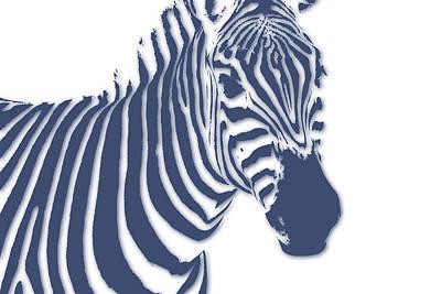 Zimbabwe Photograph - Zebra by Joe Hamilton