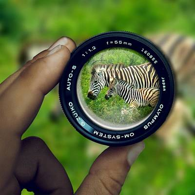 Digital Art - Zebra Lens by Vijay Sharon Govender