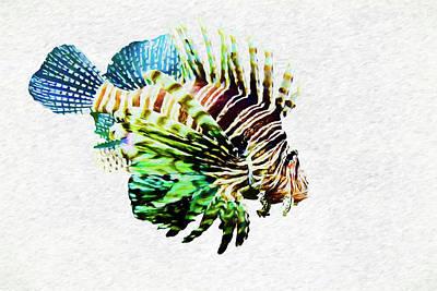 Color Photograph - Zebra Lionfish by Marcia Colelli