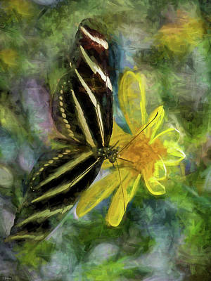 Photograph - Zebra Longwing Butterfly by Teresa Wilson