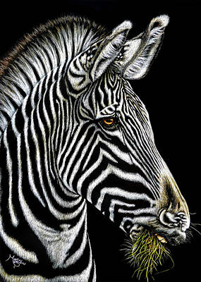 Mixed Media - Zebra by Monique Morin Matson