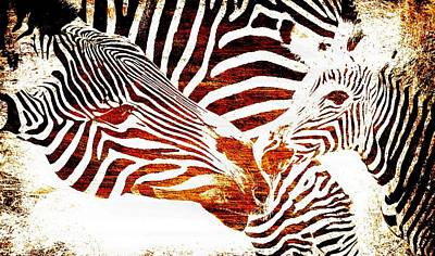 Photograph - Zebra Mother And Calf Impression by Werner Lehmann