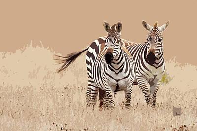 Digital Art - Zebra Pair by Sharon Foelz