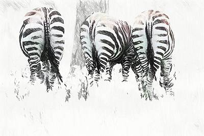 Photograph - Zebra Rears by Alice Gipson