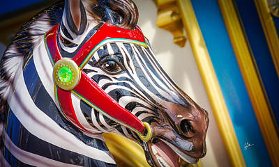 Photograph - Zebra Ride by TK Goforth
