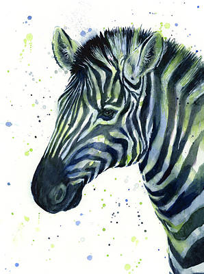 Zebra Art Painting - Zebra Watercolor Blue Green  by Olga Shvartsur