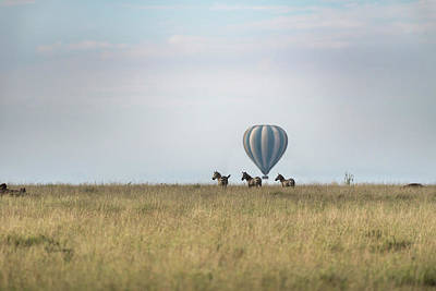 Photograph - Zebras And Balloon On The Horizon In Serengeti by RicardMN Photography