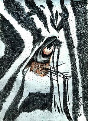 Zebras Eye - Colored Pencil Art  Original by Scott D Van Osdol