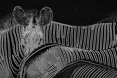 Photograph - Zebras In Kenya East Africa by Carl Purcell