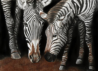 Drawing - Zebras by William Underwood