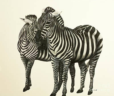 Zebras  Original