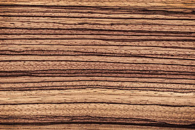Photograph - Zebrawood - Natural Abstract by Phil Cardamone