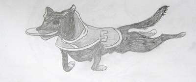 Michigan State Drawing - Zeeke The Wonder Dog by Rebecca Wood