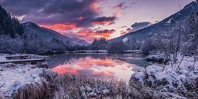 Photograph -  Zelenci Springs  by Michael Damiani