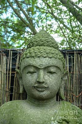Photograph - Zen Attitude by Michelle Meenawong