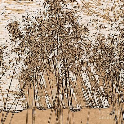 Photograph - Zen Bamboo Garden by Onedayoneimage Photography