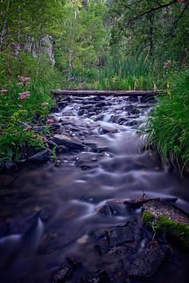 Photograph - Zen Creek by Ray Van Gundy