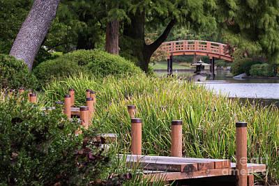 Photograph - Zen Garden by Andrea Silies