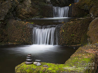 Photograph - Zen by Idaho Scenic Images Linda Lantzy