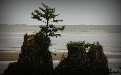 Photograph - Zen by Katie Wing Vigil
