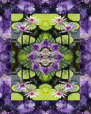 Spiritual. Geometric Photograph - Zen Lilies by Bell And Todd