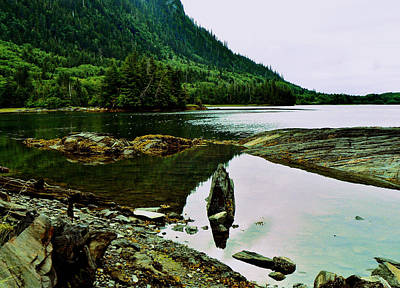 Photograph - Zen Shores Haida Gwaii Bc by Barbara St Jean