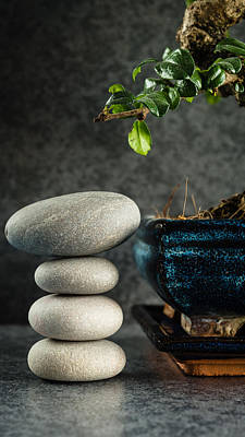 Zen Stones And Bonsai Tree Art Print by Marco Oliveira