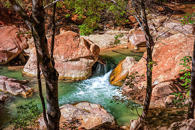 Photograph - Zenlike Zion by John M Bailey