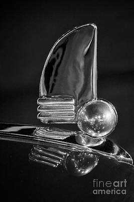 Photograph - Zephyr Hood Ornament by Dennis Hedberg