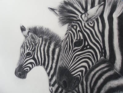 Zebras Art Print by Adrienne Martino