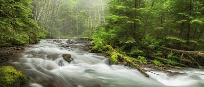 Photograph - Zig Zag Creek Panorama by Angie Vogel