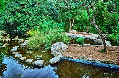 Photograph - Zilker Japanese Botanical Garden II by Kristina Deane